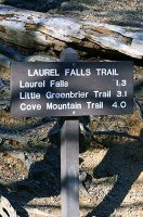 Sign for Laurel Falls Hike