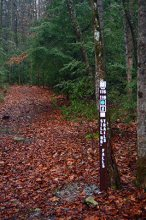 Sill Branch Falls hiking trail marker near the parking area