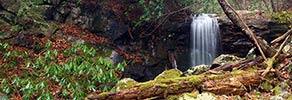 Pine Ridge Falls Panoramic View