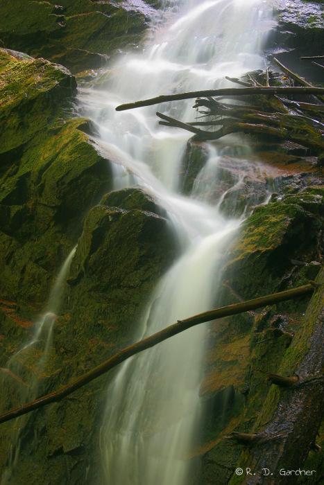 Coon Den Falls, Dennis Cove
