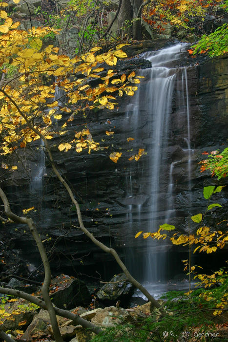 Dolan Branch Falls in October