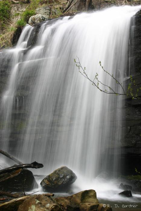 Dolan Branch Falls in early Spring