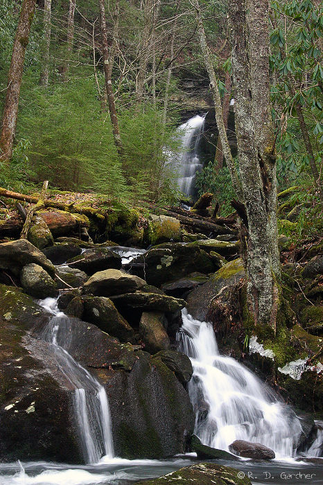 Mannis Branch Falls in the Great Smoky Mountain National Park