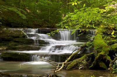 Cascades above Abram Falls