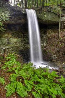 Davidson Falls