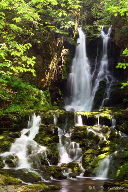 Dickson Falls, Fundy National Park