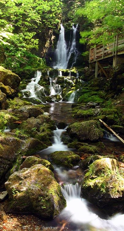 Dickson Falls Panoramic