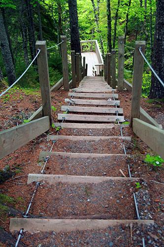 Stairs at Fuller Falls