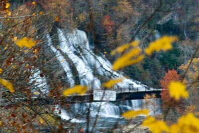 Twin Falls 80'