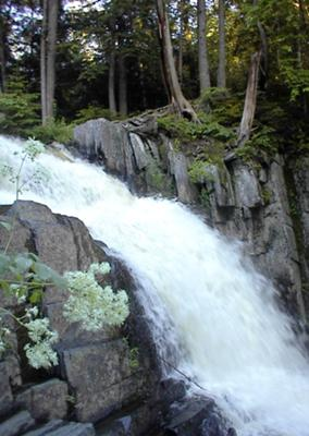 Upper Falls of Little Wilson in Maine