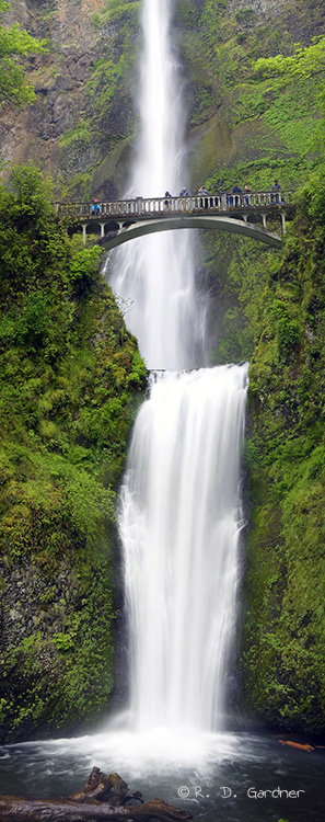 Multnomah Falls in the Columbia River Gorge, Oregon