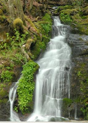 Unnamed Waterfall in GSMNP