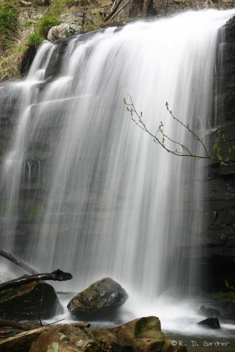 Dolan Branch Falls in early Spring