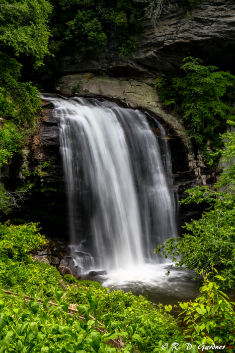 Overlook view of Looking Glass Falls