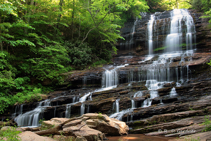 Pearson's Falls near Tryon, NC