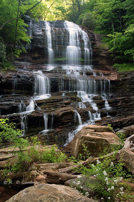Portrait View of Pearson's Falls